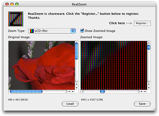 realzoom screenshot
